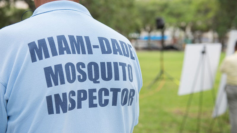 "Image of the back of a man with a blue t-shirt with the words ""Miami-Dade Mosquito Inspector"" on the shirt"